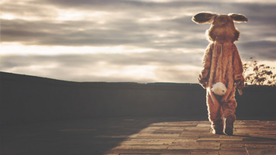 Top 10 Easter Bunnies in WNY