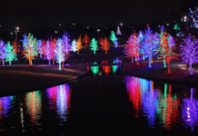 Where to see Christmas Lights in WNY