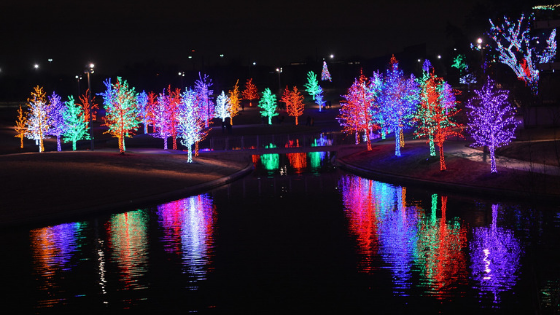 Christmas Light Installation Brooklyn Park MN